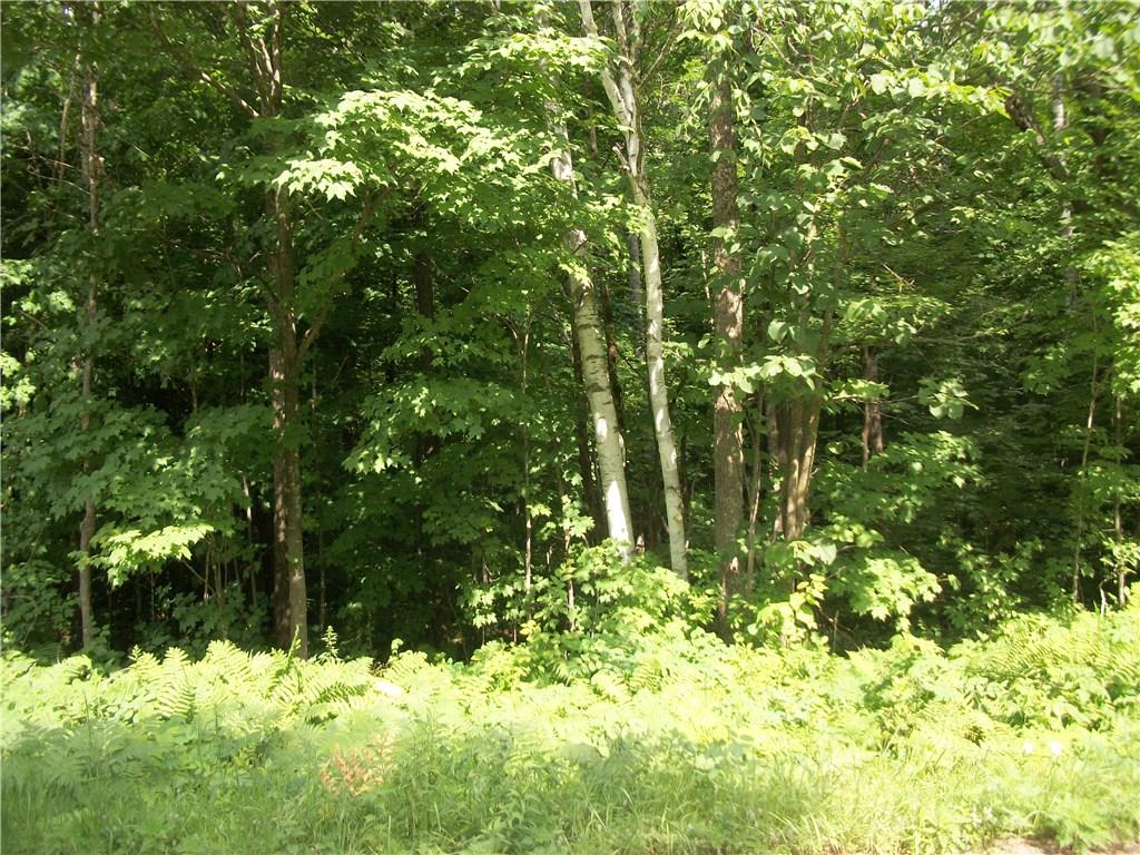 Lot 96 Woods Avenue, Birchwood, WI