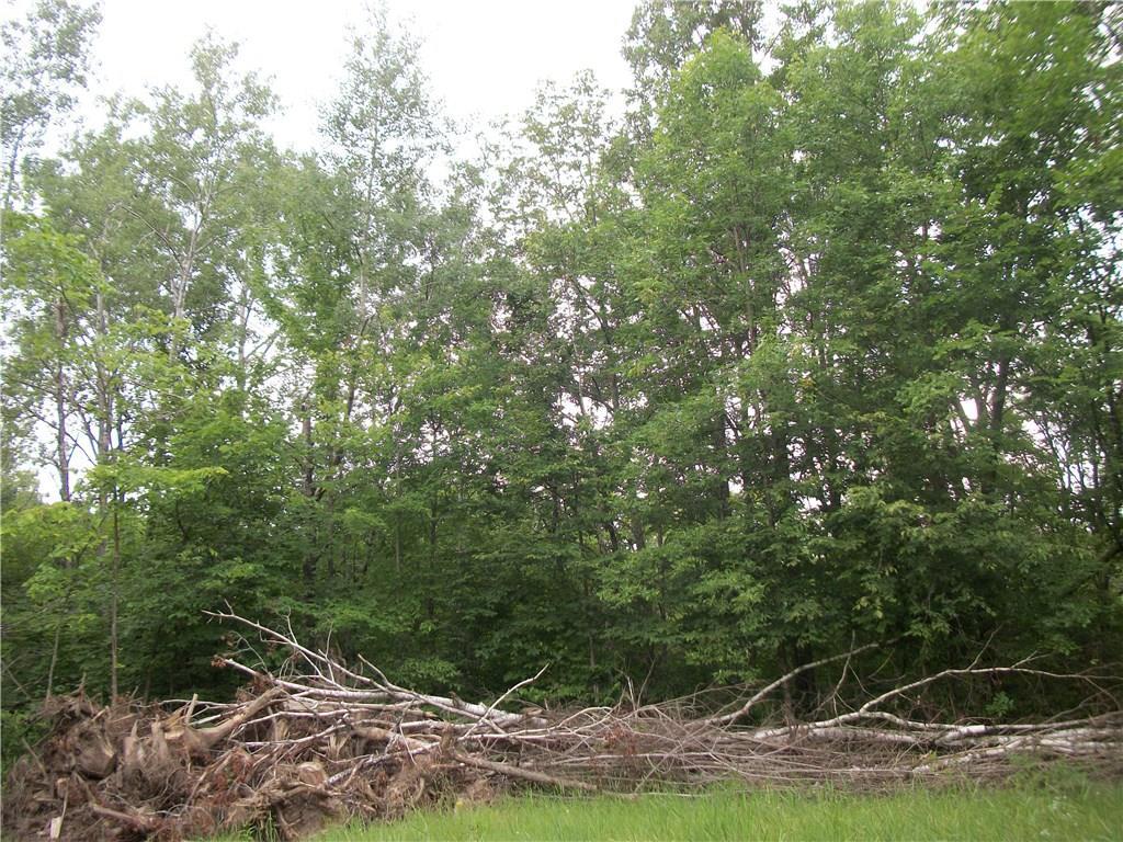 Birchwood' Houses For Sale - MLS# 1521974