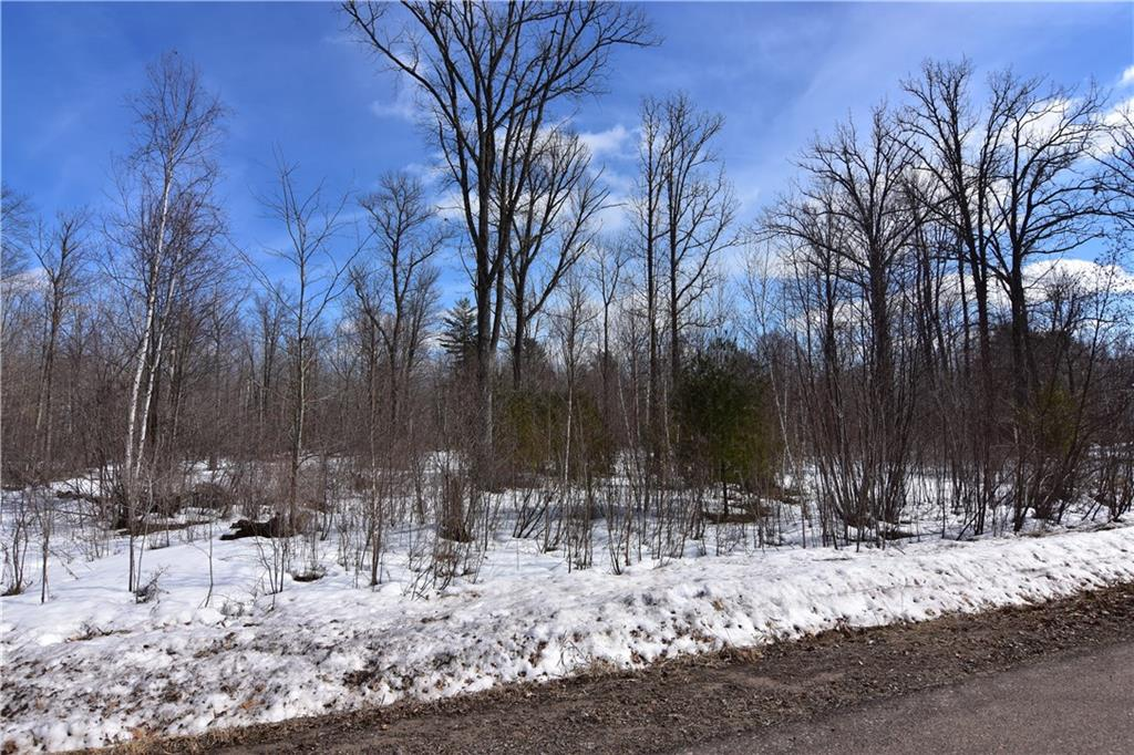 LOT 1 288TH Street, Holcombe, WI