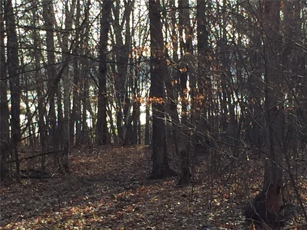 Woodridge Trail, Siren, WI