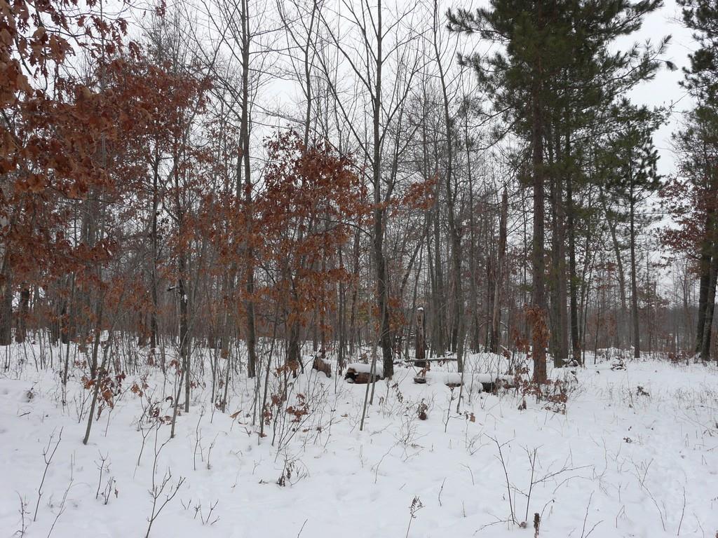 Lot 43 Deer Path Trailway, Danbury, WI