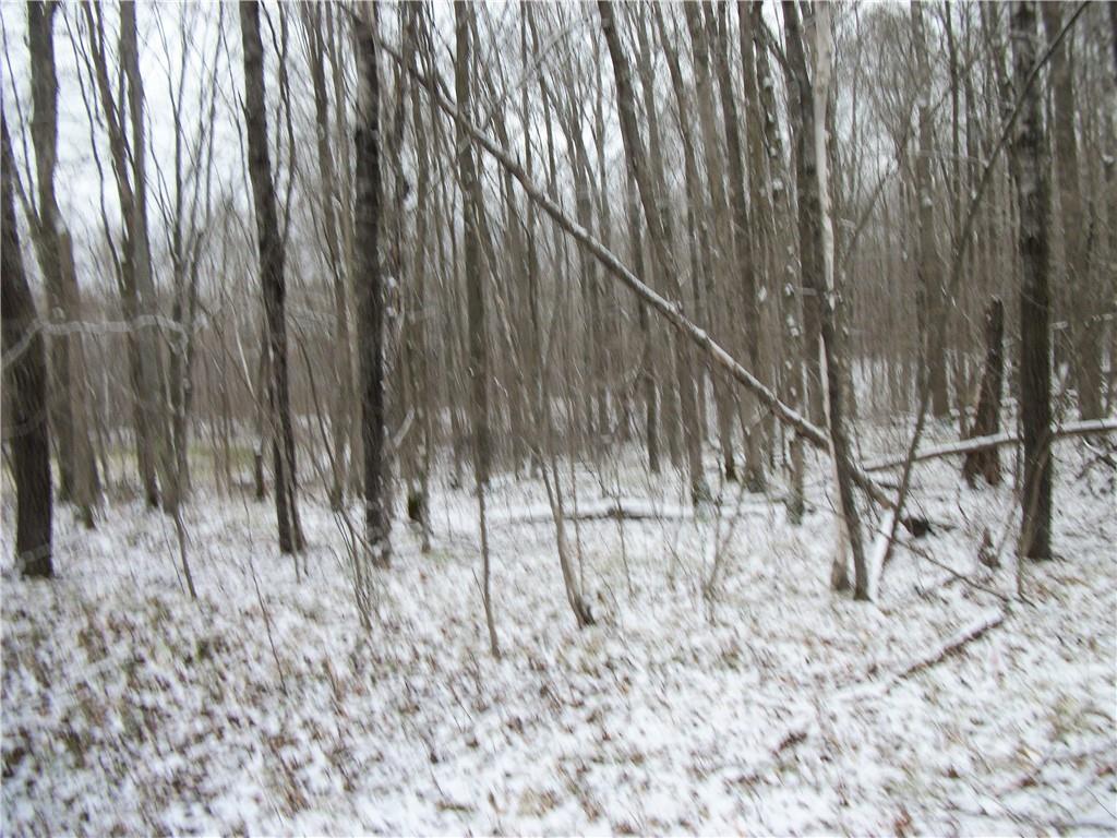 Lot #95 Maple (SPRUCE SUB) Way, Birchwood, WI