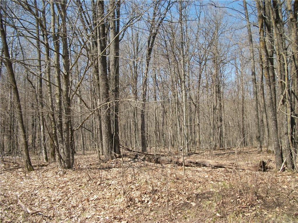 LOT #97 Woods (SPRUCE), Birchwood, WI