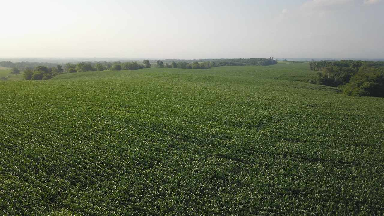 140 Ac County Road F, Fayette, WI