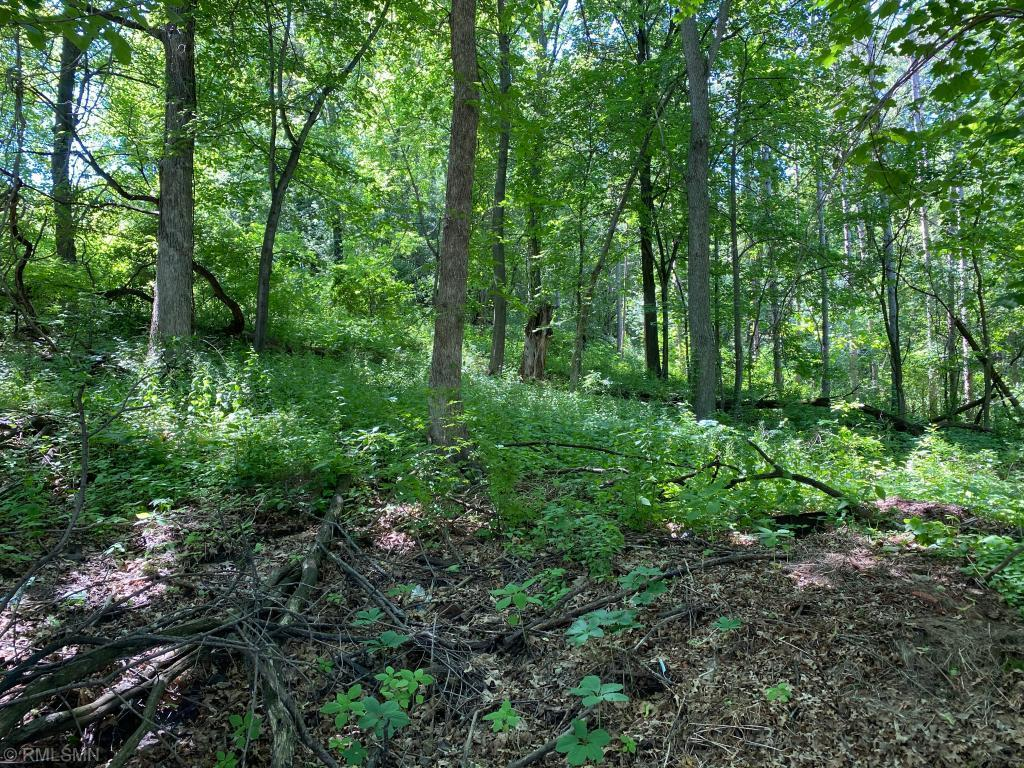 Lot 9, Blk 3  West Avenue , Red Wing, MN